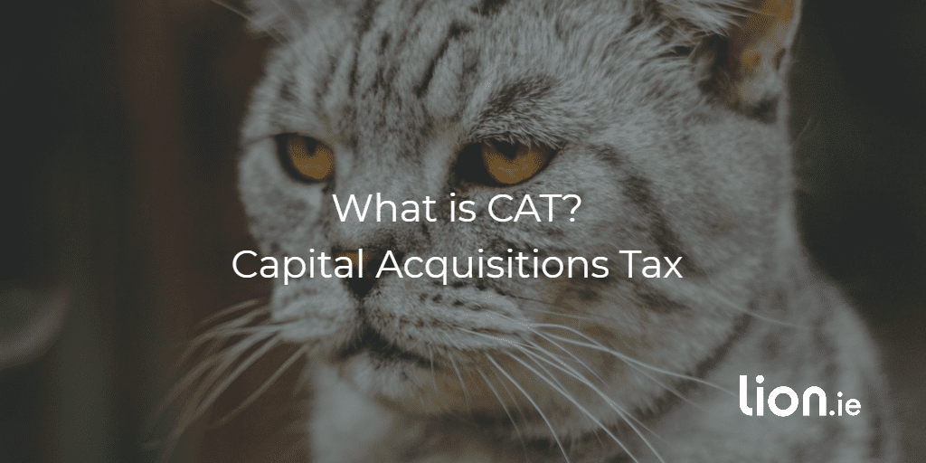 what is capital acquisitions tax text on image of cat