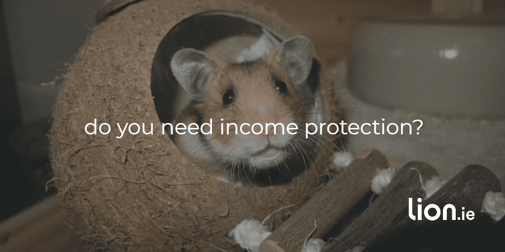 Do you need income protection?