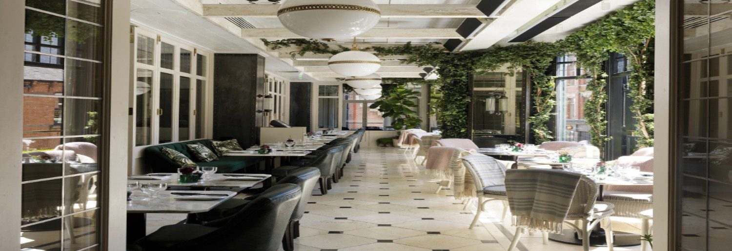 WILDE Launches KRUG Champagne Dining Experience