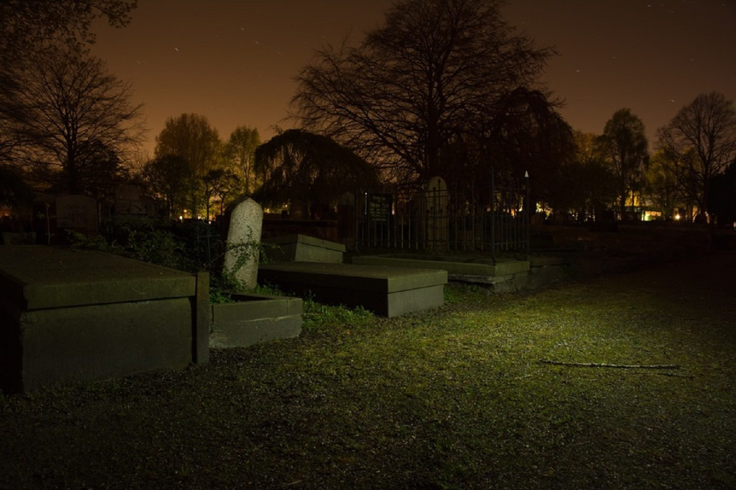 The Ultimate Guide to Halloween in DublinTown