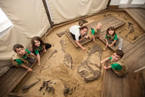 Kids Zoorassic Discovery
