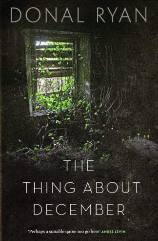 The Thing About December Donal Ryan Lilliput Press Book Cover