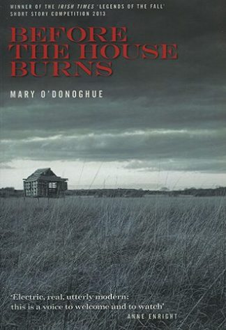 Before the House Burns by Mary O'Donoghue Lilliput Press Book Cover