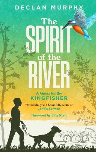 Book cover of The Spirit of the River by Declan Murphy, showing a man and a dog searching for a kingfisher. Green to yellow background.