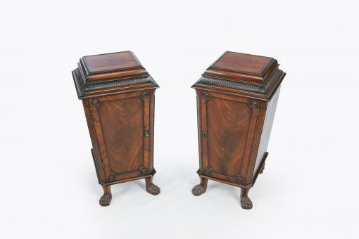 9227 - Early 19th Century Regency Pair of Pedestal Cabinets