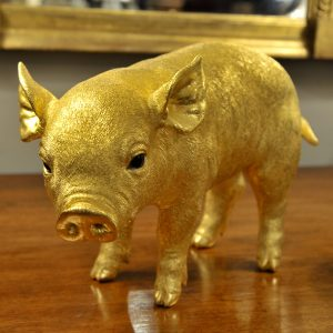 """The Golden Pig,"" by Sheelin Wilson"